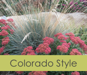 Colorado Landscape Style
