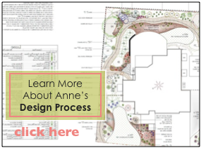 Landscape Design Process with Anne Clark