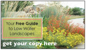 Free Guide on Low Water Plants