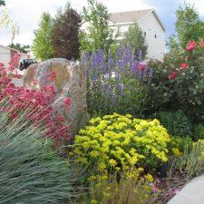 Clark colorful garden